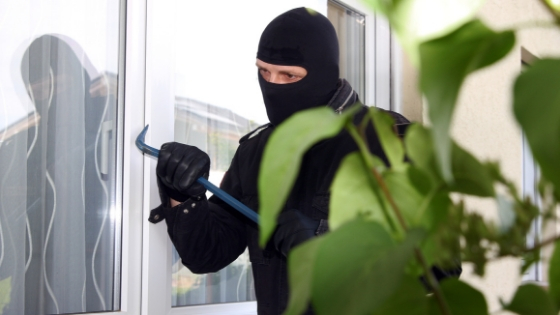What Should You Know About Window Alarm Systems?